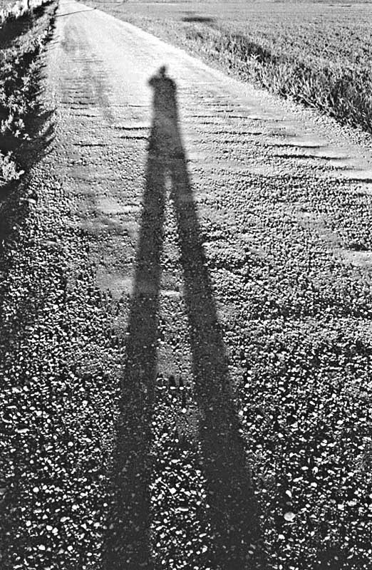 "Arthur Levine, ""My shadow"", 1954"