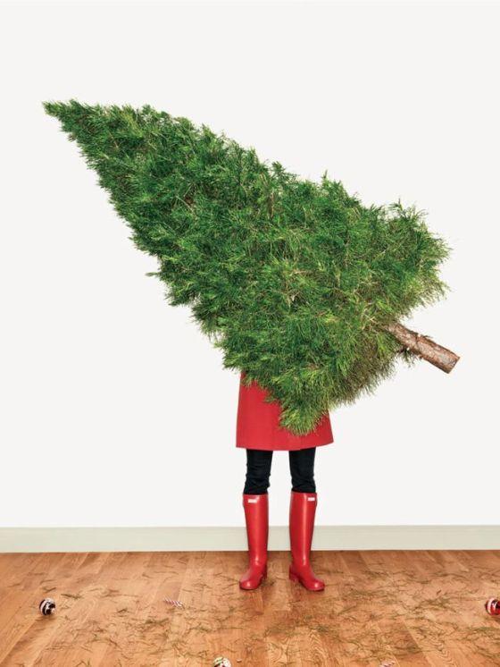 Natale con i tuoi, alla pasqua ci pensiamo poi...